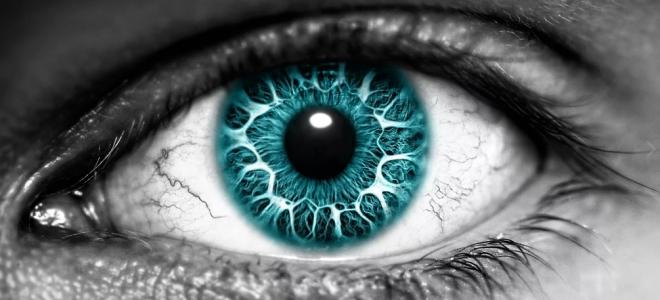 Почему говорят «глаз смотрит а мозг видит»