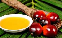 Пальмовое масло (олеин): вред и польза для человека