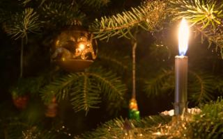 Откуда пошла традиция наряжать ёлку на Новый год