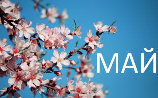Как отдыхаем в мае 2019: майские праздники