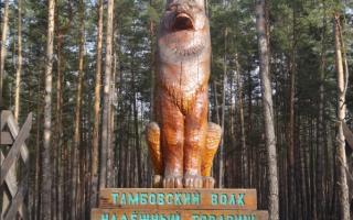 Откуда пошло выражение «тамбовский волк тебе товарищ»