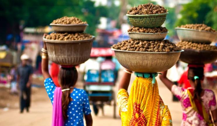 чтобы понять Индию надо пожить в деревню