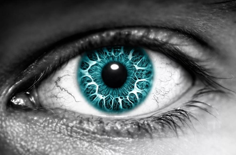 Почему говорят глаз смотрит а мозг видит
